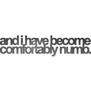 lyrics i have become comfortably numb comfortably numb lyrics polyvore