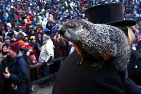groundhog day live 2015 17 best images about bryan houston s sports radio live on