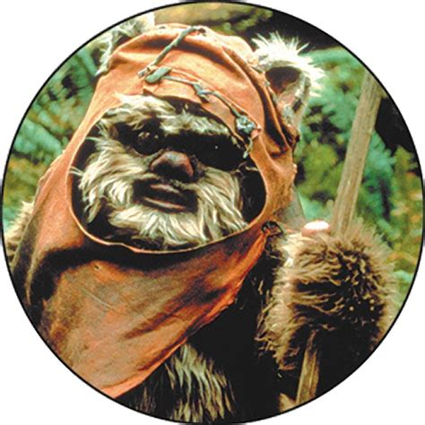 Home Window Decor by Star Wars Wicket Ewok Close Up Button Within Tab Window