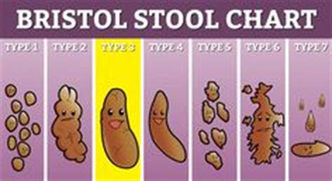 Bristol Stool Scale Pdf by Bristol Stools And Charts On