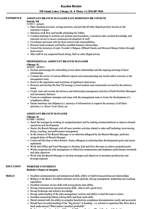 Assistant Manager Resume by Assistant Branch Manager Resume Sles Velvet
