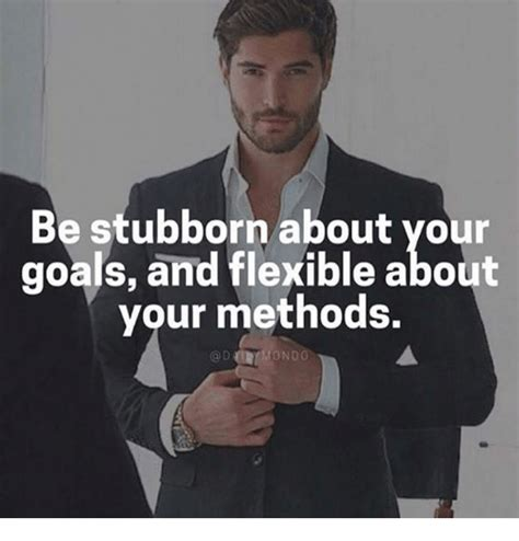 stubborn   goals  flexible
