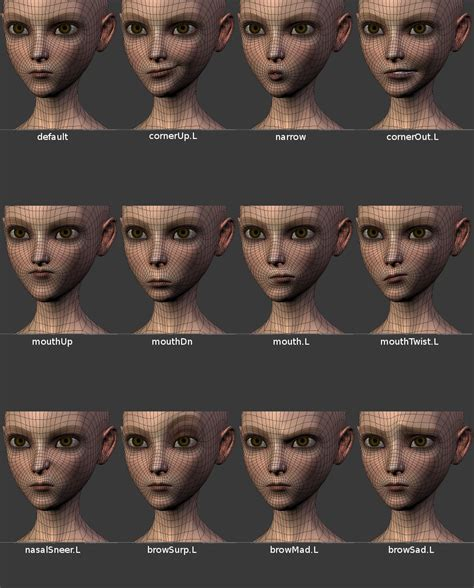 exles of face shapes r 233 solu blender comment faire un rendu avec maillage
