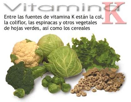 alimentos q contienen fluor l 237 pidos clasificaci 243 n l 237 pidos insaponificables terpenos