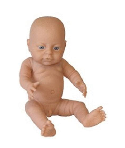 anatomically correct dolls uk baby doll bathable anatomically correct boy new ebay