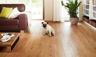 Best Flooring With Dogs The Best Flooring For Dogs Looking For The Option