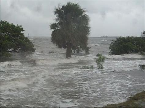 tropical storm debby tampa florida youtube