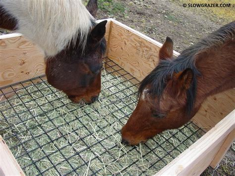 Feeders For Horses wooden pallet feeders hay overall i am 100 happy with this type of feeder after using