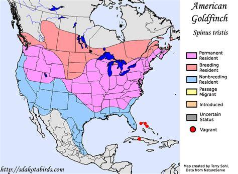 american goldfinch species range map