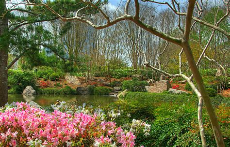 Japanese Botanical Garden Houston 10 Of The Most Beautiful Gardens In