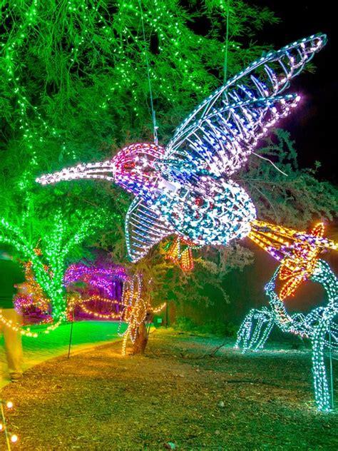 pheonix zoo lights zoolights 2015