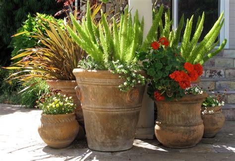 Waterfront House Designs flowering pots contemporary landscape san francisco