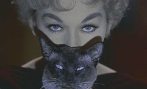 kim novak cat bell book and candle 1958 cinema cats