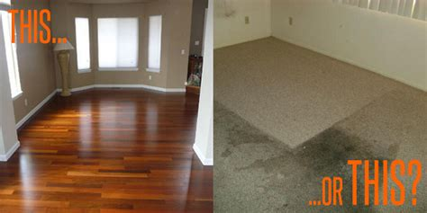 Hardwood Floors Vs Carpet Fantastic Floor The Top 5 Reasons You Should Choose Hardwood Flooring Carpet