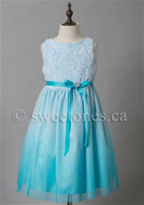 Dress Flower Bu flower dresses shoes infant and toddler dresses