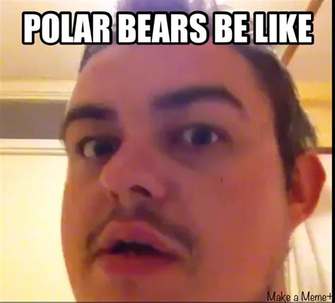 Meme Vines - polar bears vine by dinochickrox on deviantart
