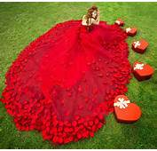 2014 Red Wedding Dresses Prom Party Quinceanera Dress Pageant Cocktail
