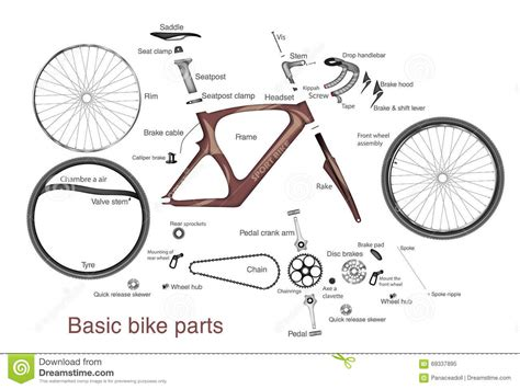 bike parts list template infographic of bike parts with the names stock vector