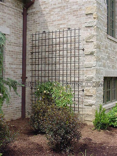 Trellis Climber Plants And Stainless Steel On Pinterest Garden Wall Trellis Metal