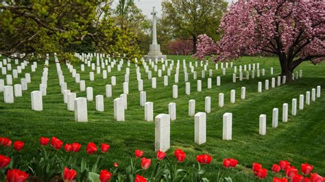 Arlington Records Arlington Cemetery S Grave Now Searchable The Two Way Npr
