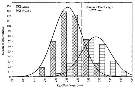 average shoe size for 11 yr average shoe size for 11 yr 28 images average shoe