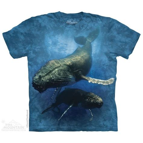 Whale Tshirt 17 best images about whale rescues on photos and gray whale