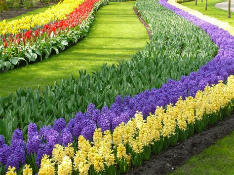 Gardens Flowers Colorful Keukenhof Gardens World For Travel
