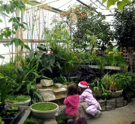 Minnesota Landscape Arboretum Library Top 10 Family Picks January In The Cities Family