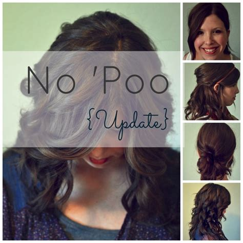 one year without shoo the no poo method the crunchy moose no poo before and after no poo update photos and faq from faye