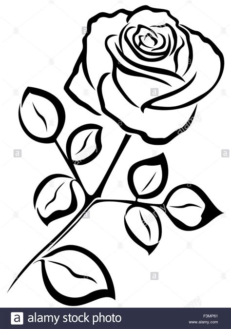 black vector outline of single rose flower isolated on a