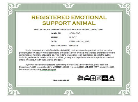 emotional support certificate exle service certification emotional supportcasanovacertificates