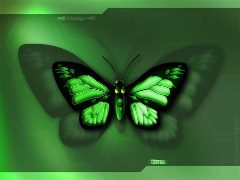 wallpaper green butterfly desktop wallpaper green butterfly
