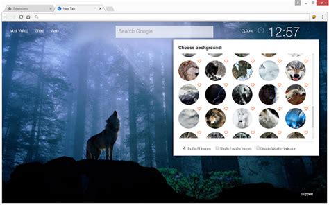 theme google chrome wolf wolf wallpaper hd new tab wolves themes chrome web store