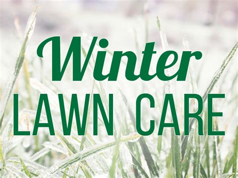 winter lawn care winter lawncare