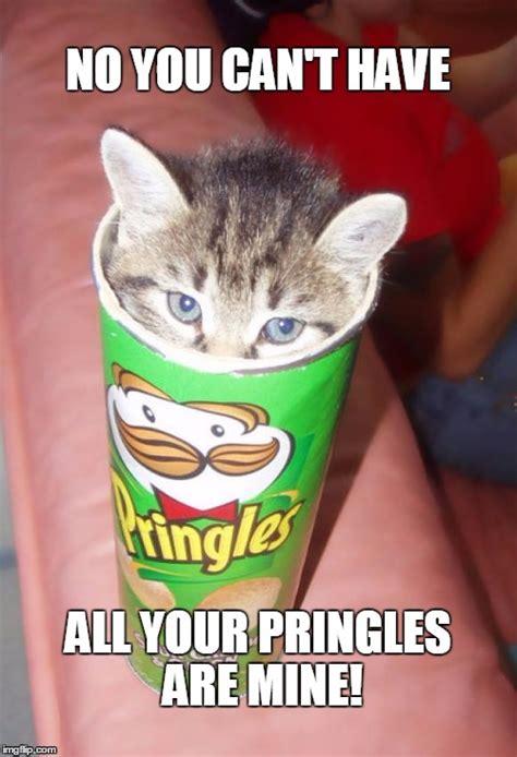 Pringles Meme - lordoakrock s images imgflip