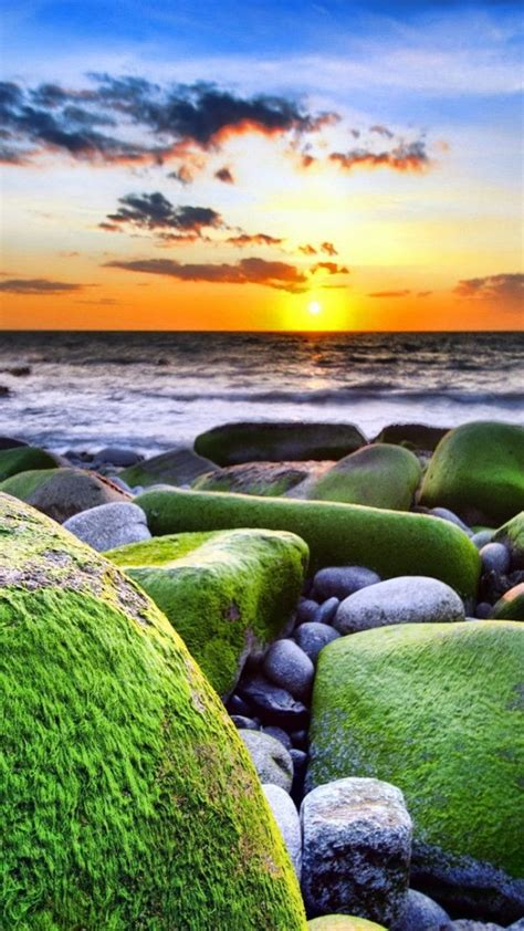 wallpaper for android nature wallpapers green nature beach android wallpapers