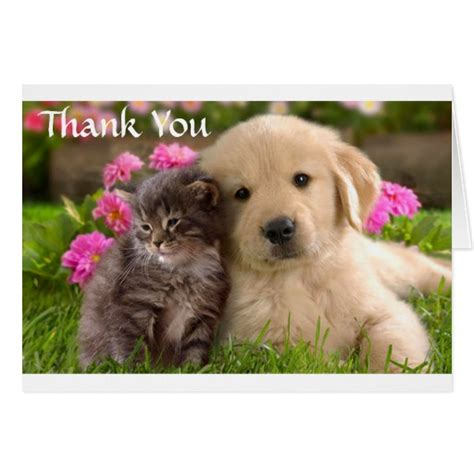 thank you puppy saying thank you breeds picture