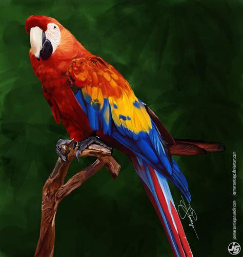 colorful parrots colorful parrot by joemarsantiago on deviantart