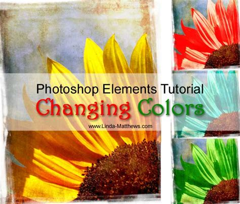 changing colors in photoshop photoshop elements tutorial changing colors matthews