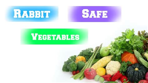 vegetables for rabbits rabbit safe vegetables lovablelop