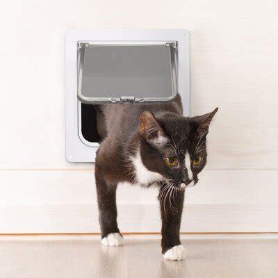 pet doors dog cat doors youll love   wayfair