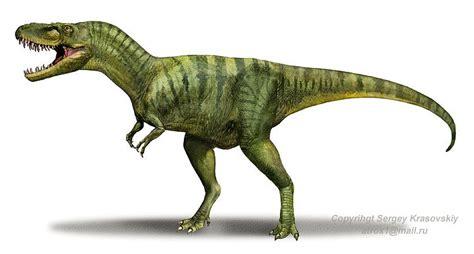 Fossil De Cuerto 10 facts about albertosaurus