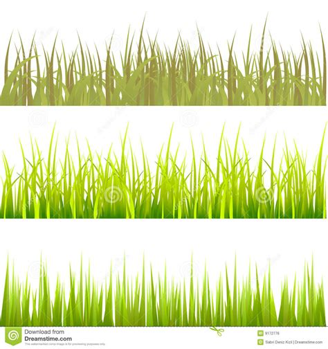 pattern grass vector grass pattern set vector royalty free stock image image