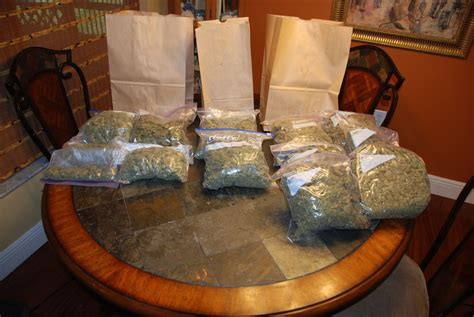 Ne Warrant Search Search Warrant Leads To 10 Lbs Of Marijuana And 4 600 Cape Coral