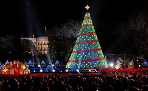 obama lights the national christmas tree political news