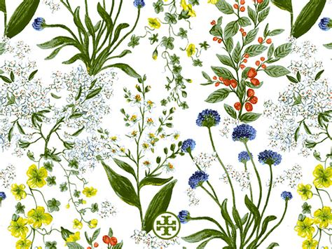 demand pattern in french tory burch wallpaper www pixshark com images galleries