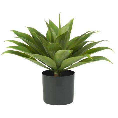 Home Depot Artificial Plants by Nearly 25 In H Green Agave Silk Plant 6565 The