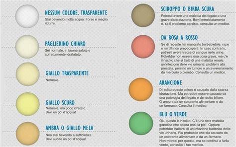 feci chiare alimentazione dal colore della tua pip 236 puoi sapere come stai ecco le