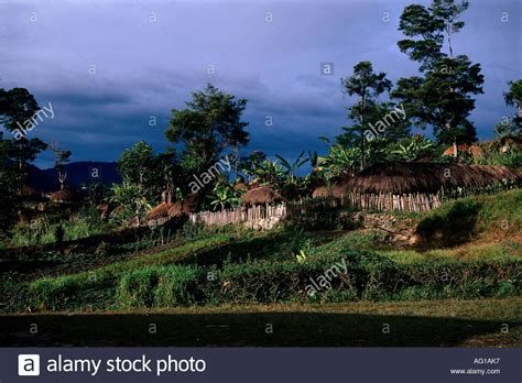 Ethnology And Tourism In Indonesia geography travel indonesia island new guinea irian jaya baliem stock photo royalty free