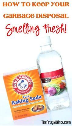 Dawn dish soap, Carpet cleaners and White vinegar on Pinterest
